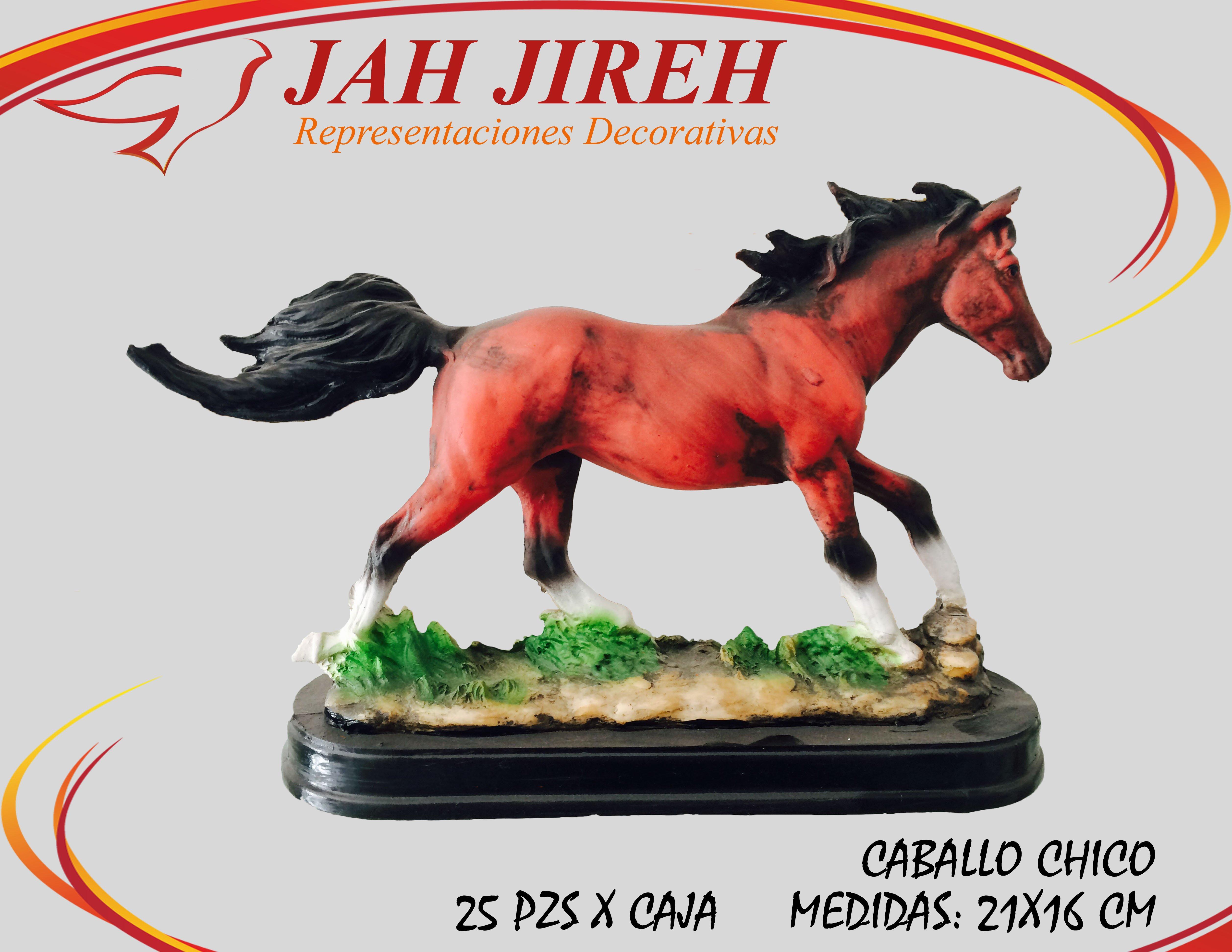 https://0201.nccdn.net/1_2/000/000/0eb/747/caballo-chico.jpg