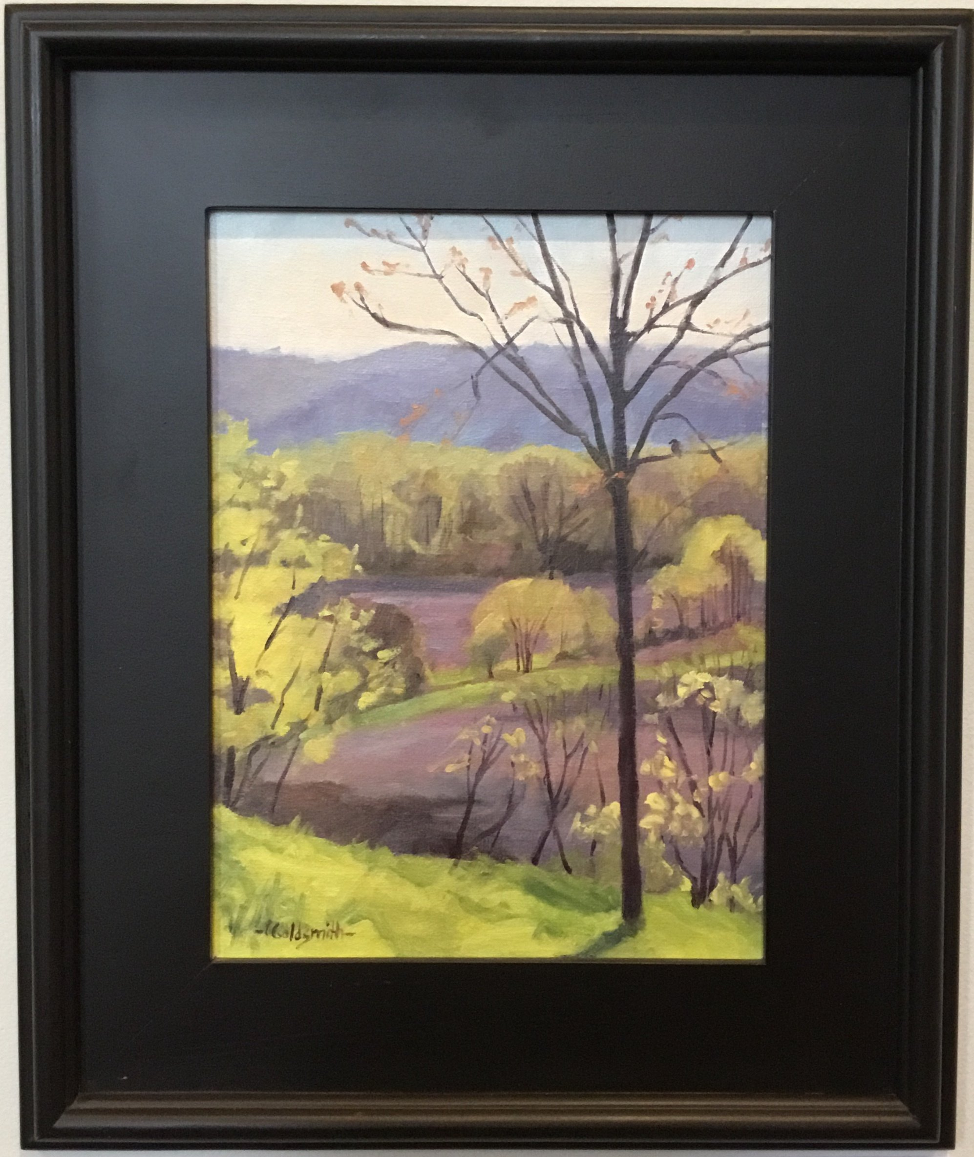 "View from Sugar Creek Winery Augusta Oil on linen panel 12"" X 9"" $375."