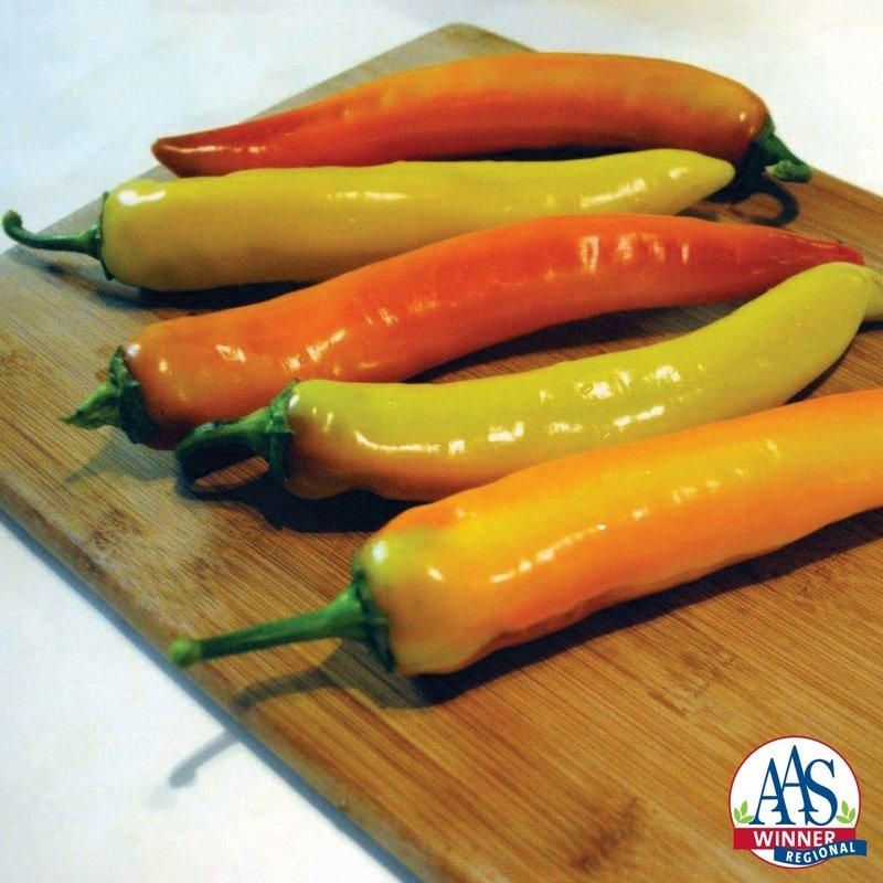Pepper Hot Sunset X3R®