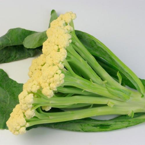 Cauliflower Fioretto
