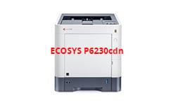 https://0201.nccdn.net/1_2/000/000/0ee/b63/ECOSYS_P6230cdn_Image1-250x150.jpg