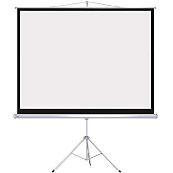 "72"" Projector Screen $25/day or weekend"
