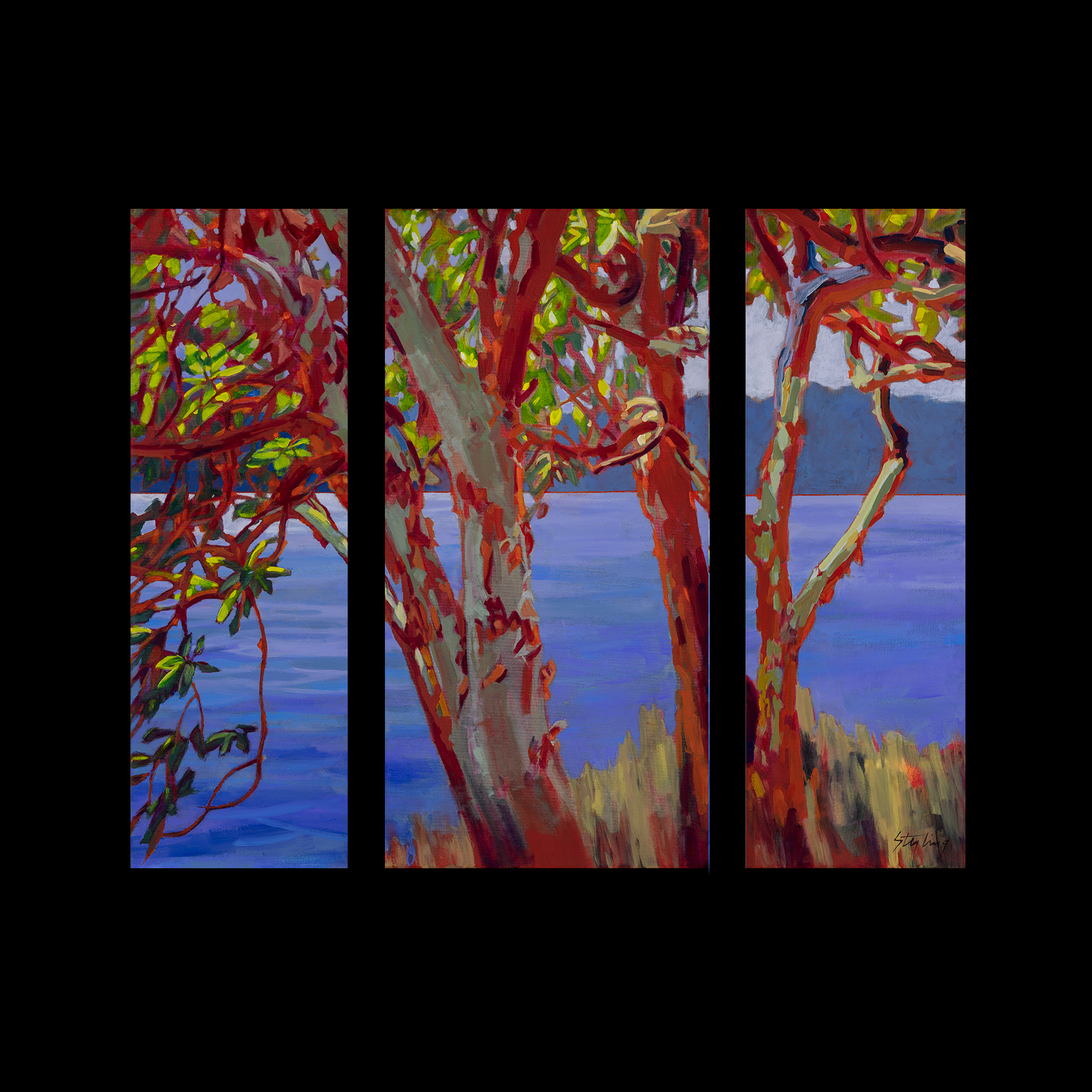 Madrona Meditation 30x40 triptych acrylic no canvas $1600