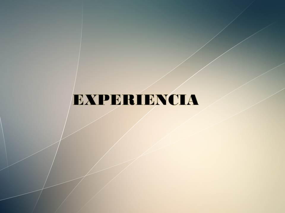 https://0201.nccdn.net/1_2/000/000/0f0/37b/EXPERIENCIA--960x720.jpg