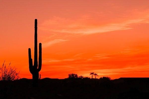 Bright Orange Desert Sunset