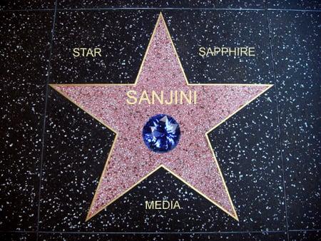 Sanjini Pink Star