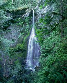 Marymere Falls, WA