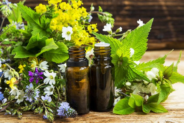 Health Care and Herbal Medicine