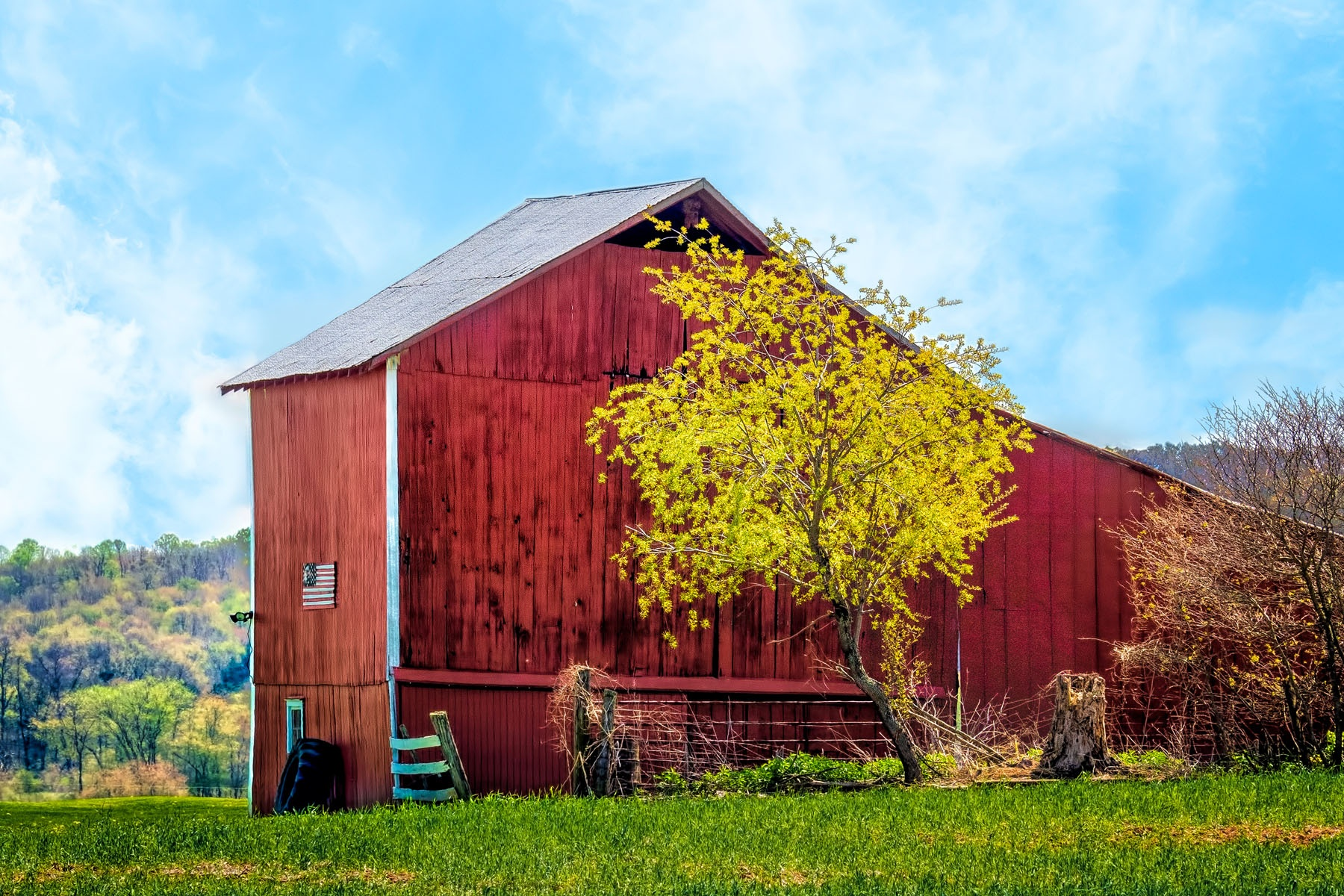 AMISH BARN - I noticed this barn while driving through the Amish country in central Ohio. What caught my eye was the contrast of the bright sun lit tree against the red of the barn siding. The flag was a bonus.