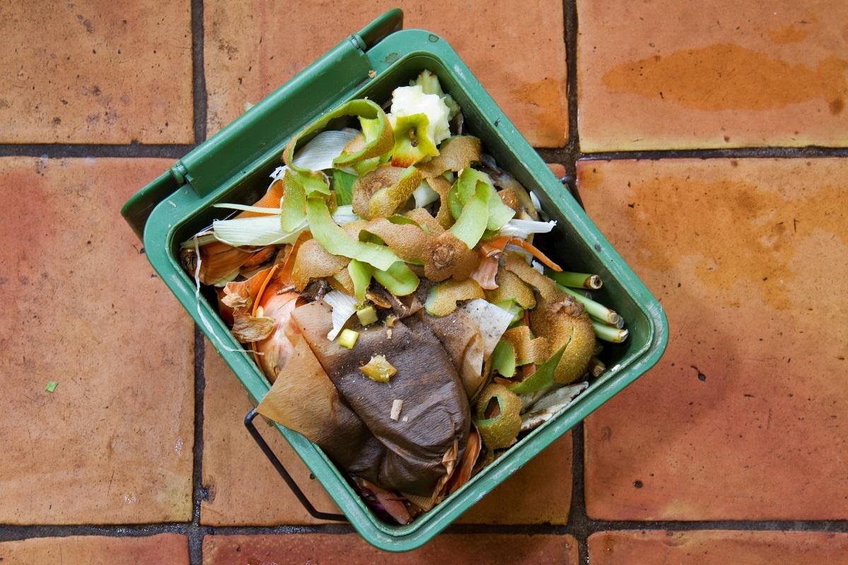 Kitchen food scrap in bin