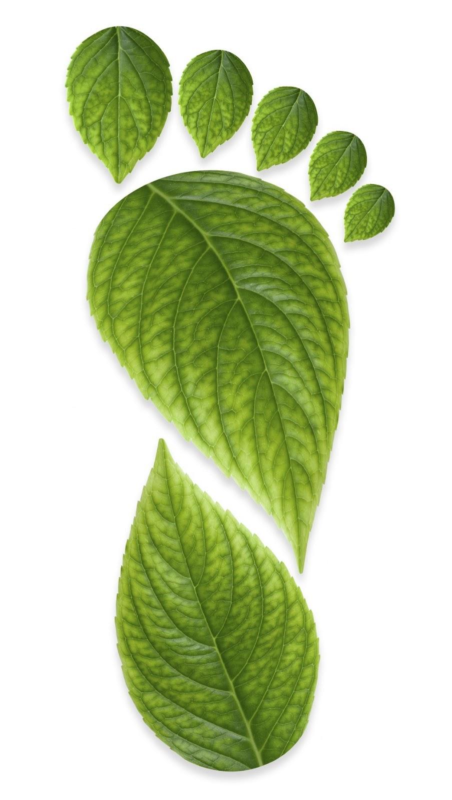 ISO 50001 Huella de Carbono