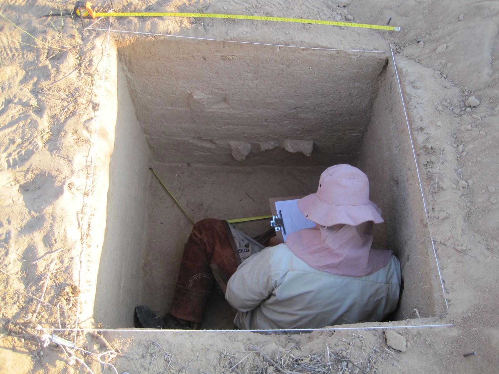 Registro do perfil com a exposição de vestígios arqueológicos