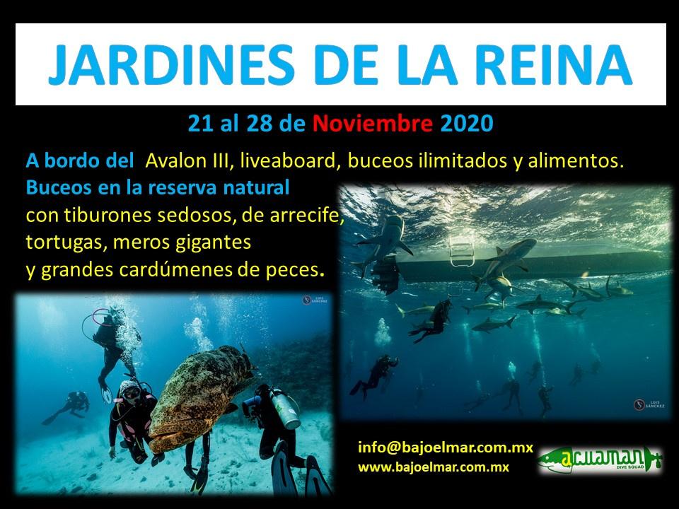 https://0201.nccdn.net/1_2/000/000/0fd/12d/11-Cuba-Rango-Jardines-21---28-Nov-2020-960x720.jpg