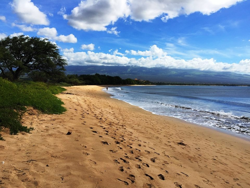 https://0201.nccdn.net/1_2/000/000/0fe/250/An-awesome-deserted-beach-on-our-Maui-Island-Day-Tour-960x720.jpg