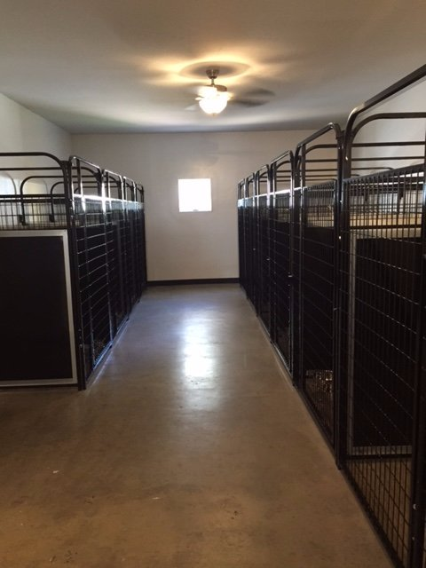 kennel room1