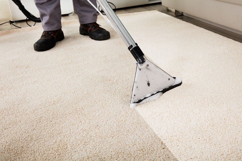 Interesting Facts You Should Know about Carpet Cleaning