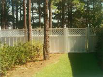 White Fence 6