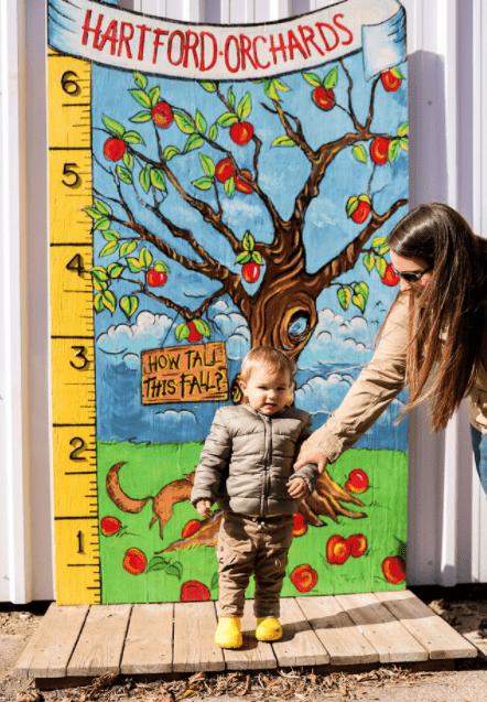 https://0201.nccdn.net/1_2/000/000/101/709/apple-tree-12-min.png