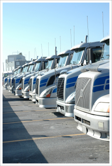 Trucks front picture    