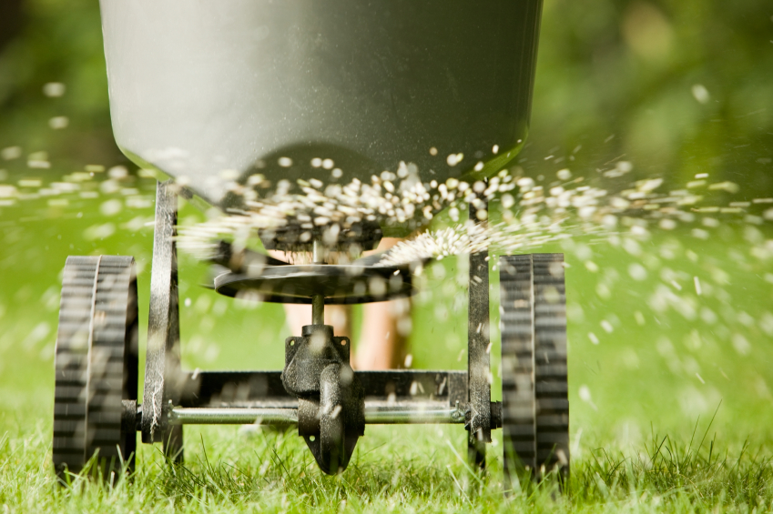 Fertilizer spreader spraying pellets on grass