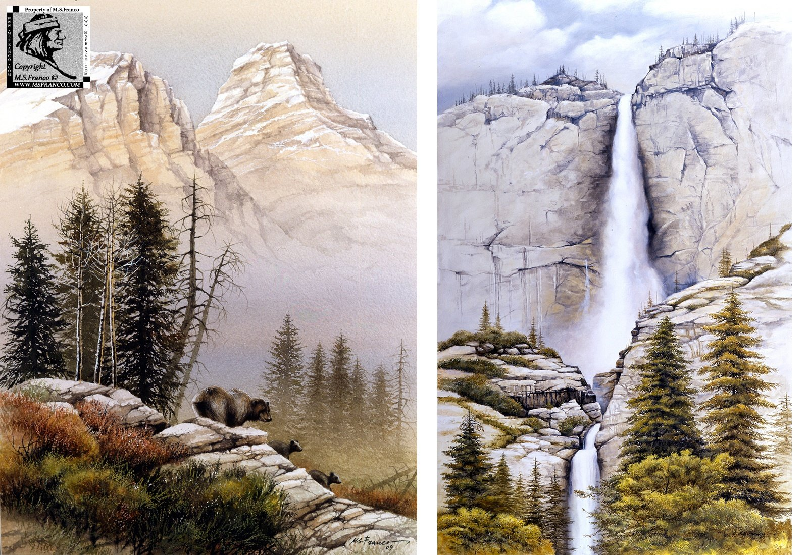 """Grizz Territory"" and ""Yosemite Falls"""
