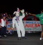 Skater in Bunny Costume