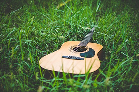 Guitar in The Forest