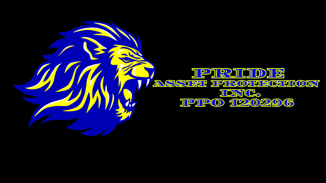 PRIDE ASSET PROTECTION INC. PPO 120296
