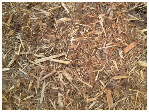 Natural fiber mulch||||