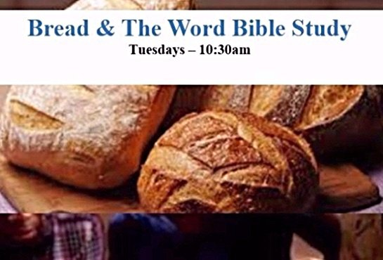 The Word Bible Study