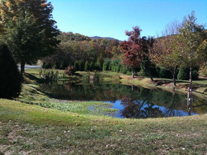 Fall colors reflecting off one of our ponds.