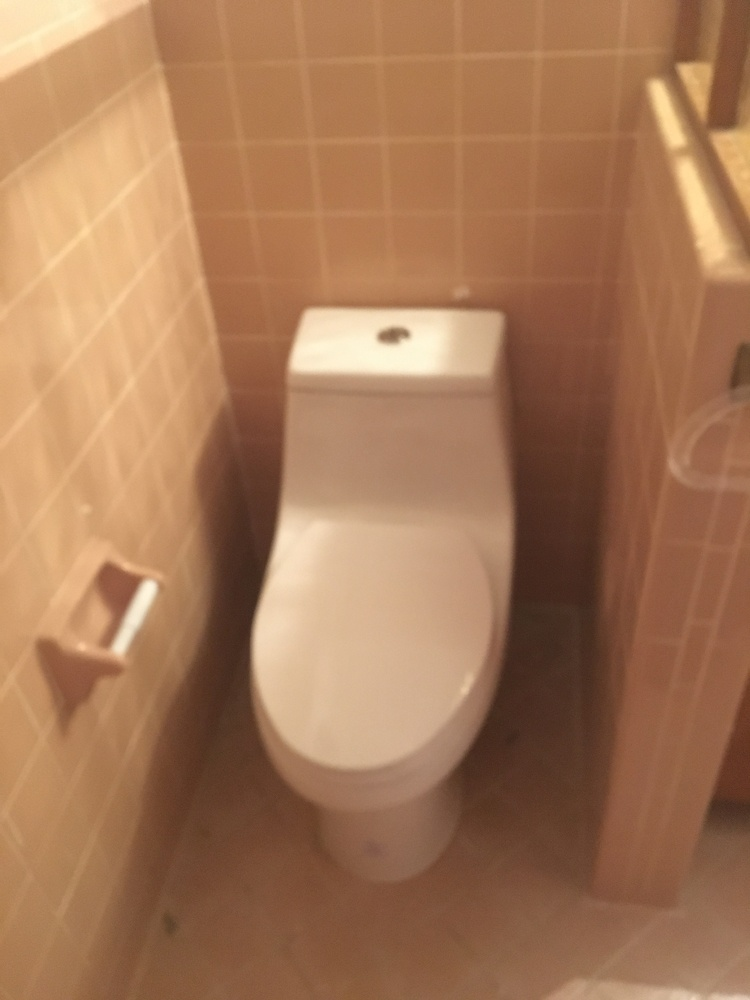 https://0201.nccdn.net/1_2/000/000/10a/1dc/New-Toilet-2-750x1000.jpg