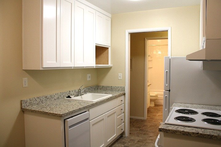 The kitchen also has a new dishwasher, and a cabinet for your microwave.