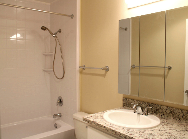 Like this picture, the bathroom will have a new, granite countertop, and new vanity cabinets.