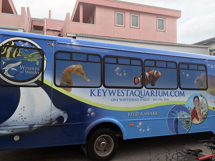 One of the many bus wraps for HTA