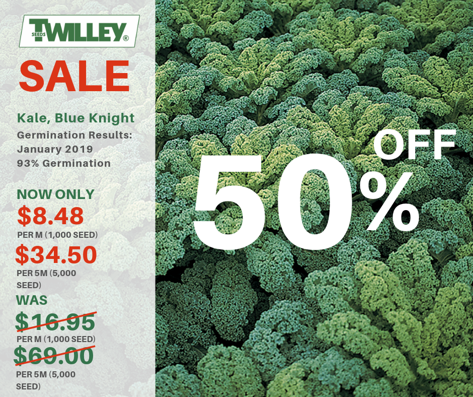 Sale: Kale, Blue Knight