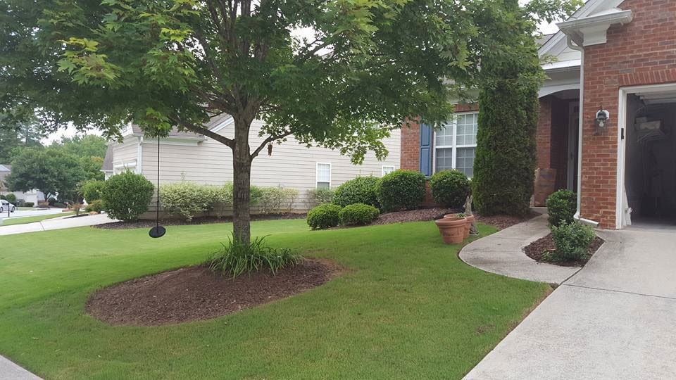 Shade Tree Landscaping and Lawn Care