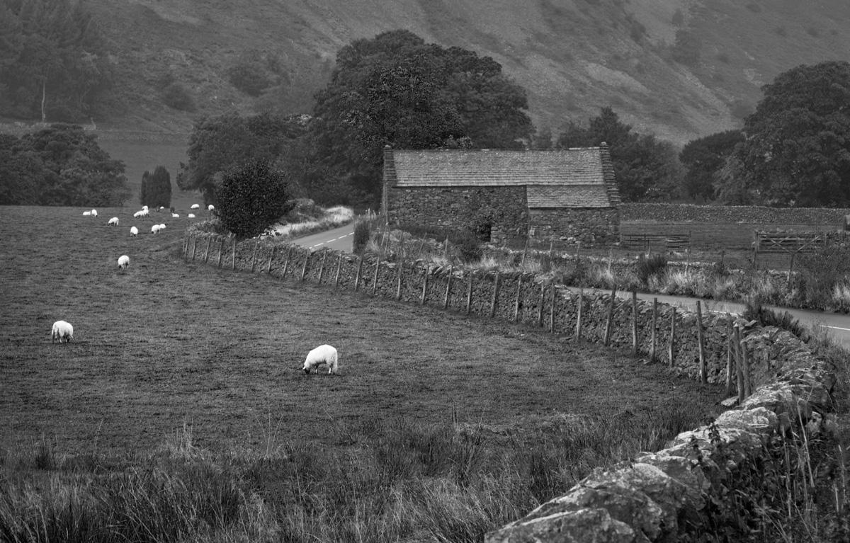 Keswick Pasture