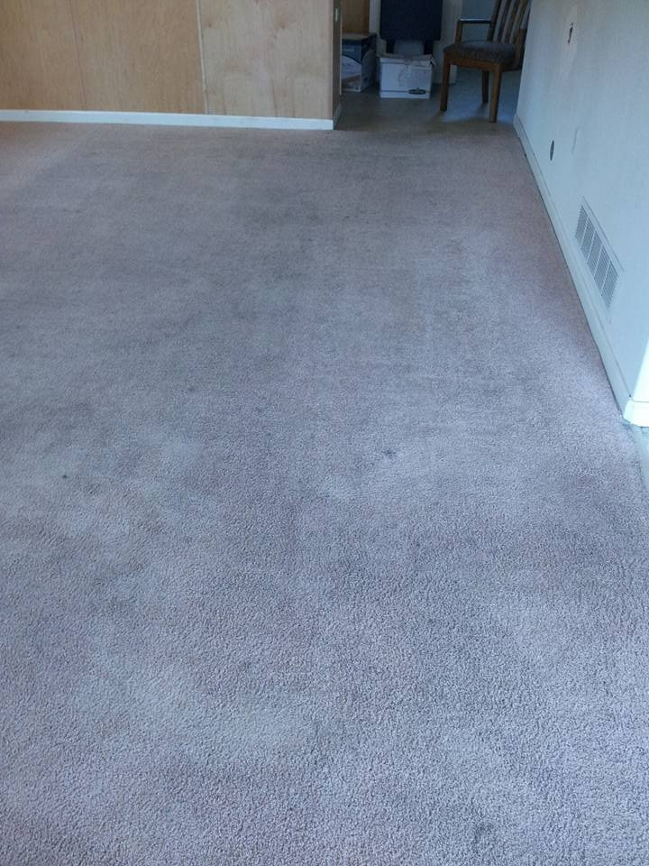 Carpet (After) 3