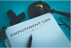 Employment law is a broad area encompassing all areas of the employer/employee relationship. Employment law consists of thousands of federal and state statutes, administrative regulations, and judicial decisions.