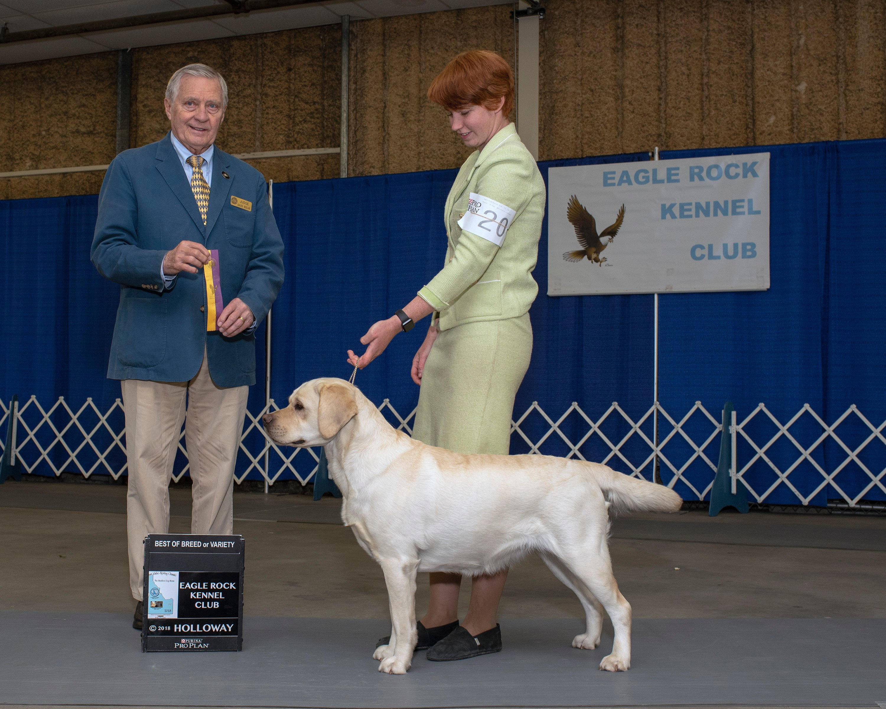 L'Una  Best of Breed Eagle Rock Kennel Club, 7/2018