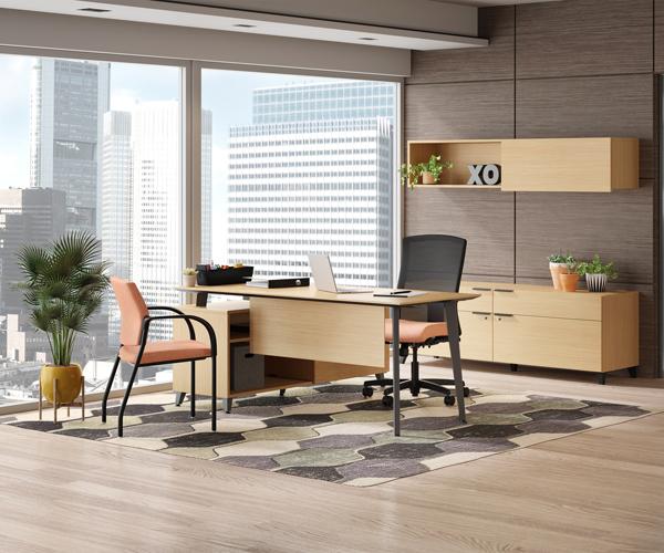 DeXTR Desk