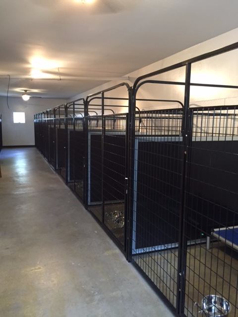 kennel room2