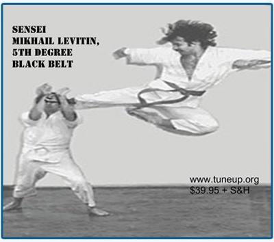 Sensei Mikhail Levitin