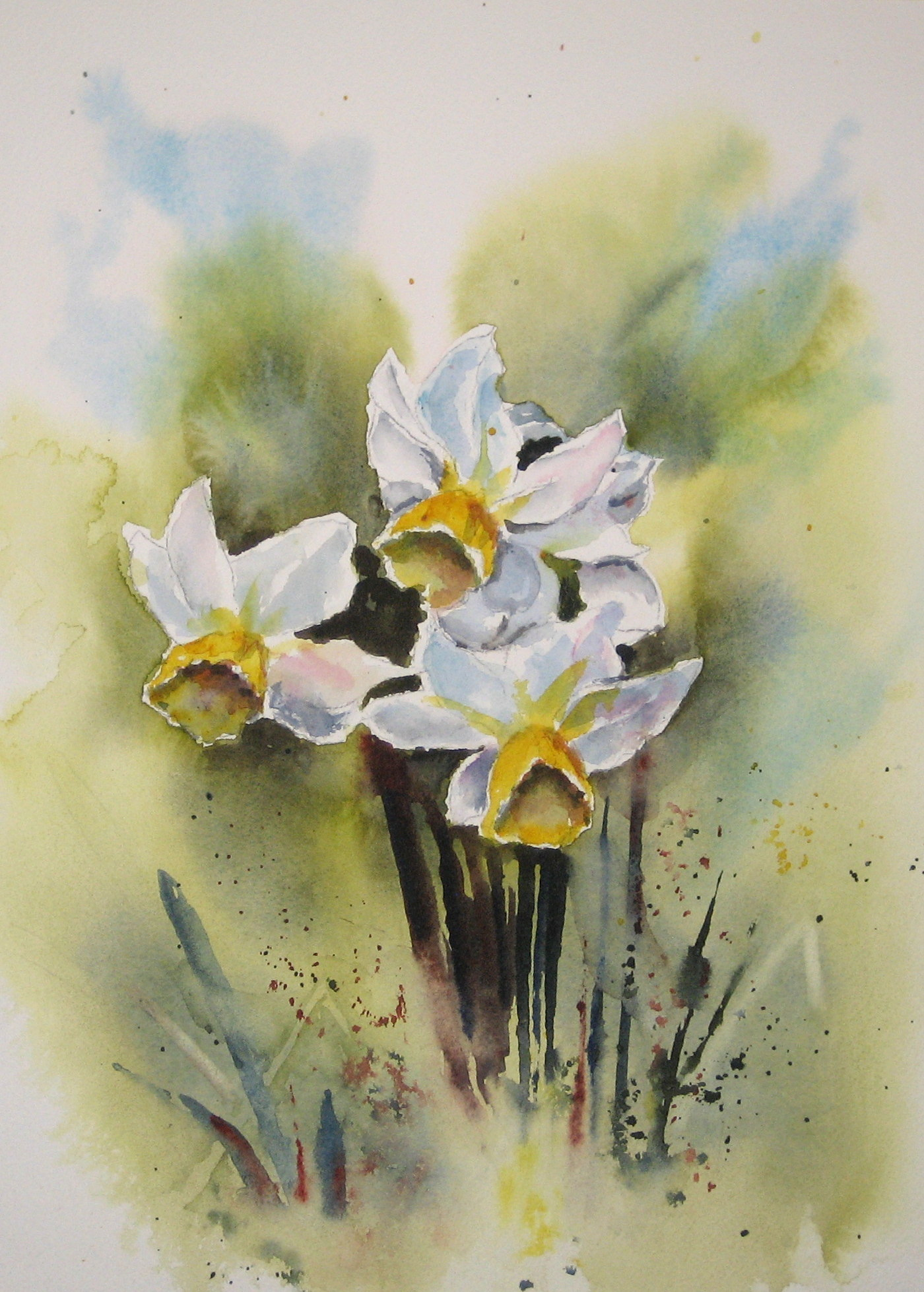 https://0201.nccdn.net/1_2/000/000/114/837/daffodils-1400x1958.jpg