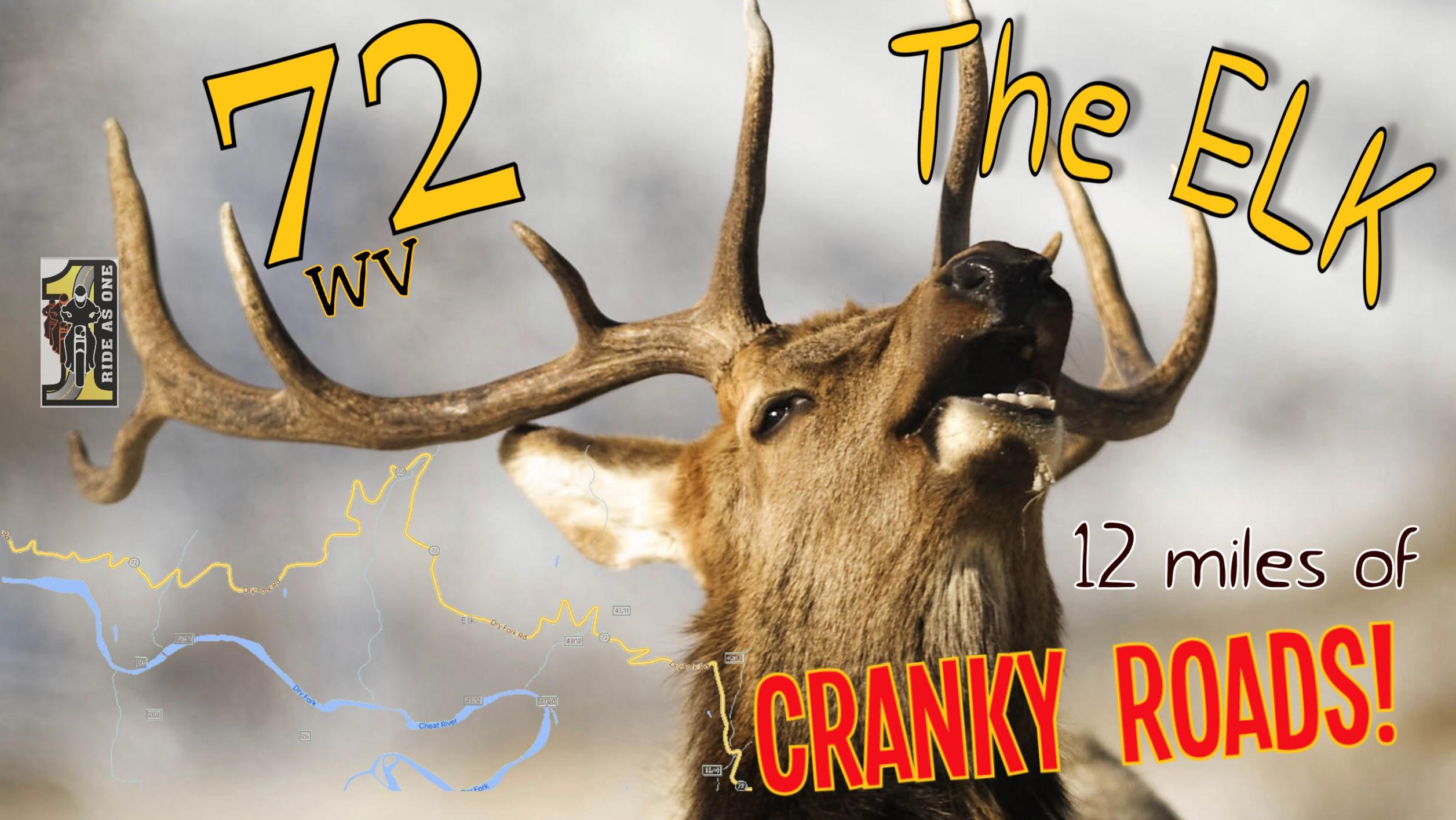 72 The Elk