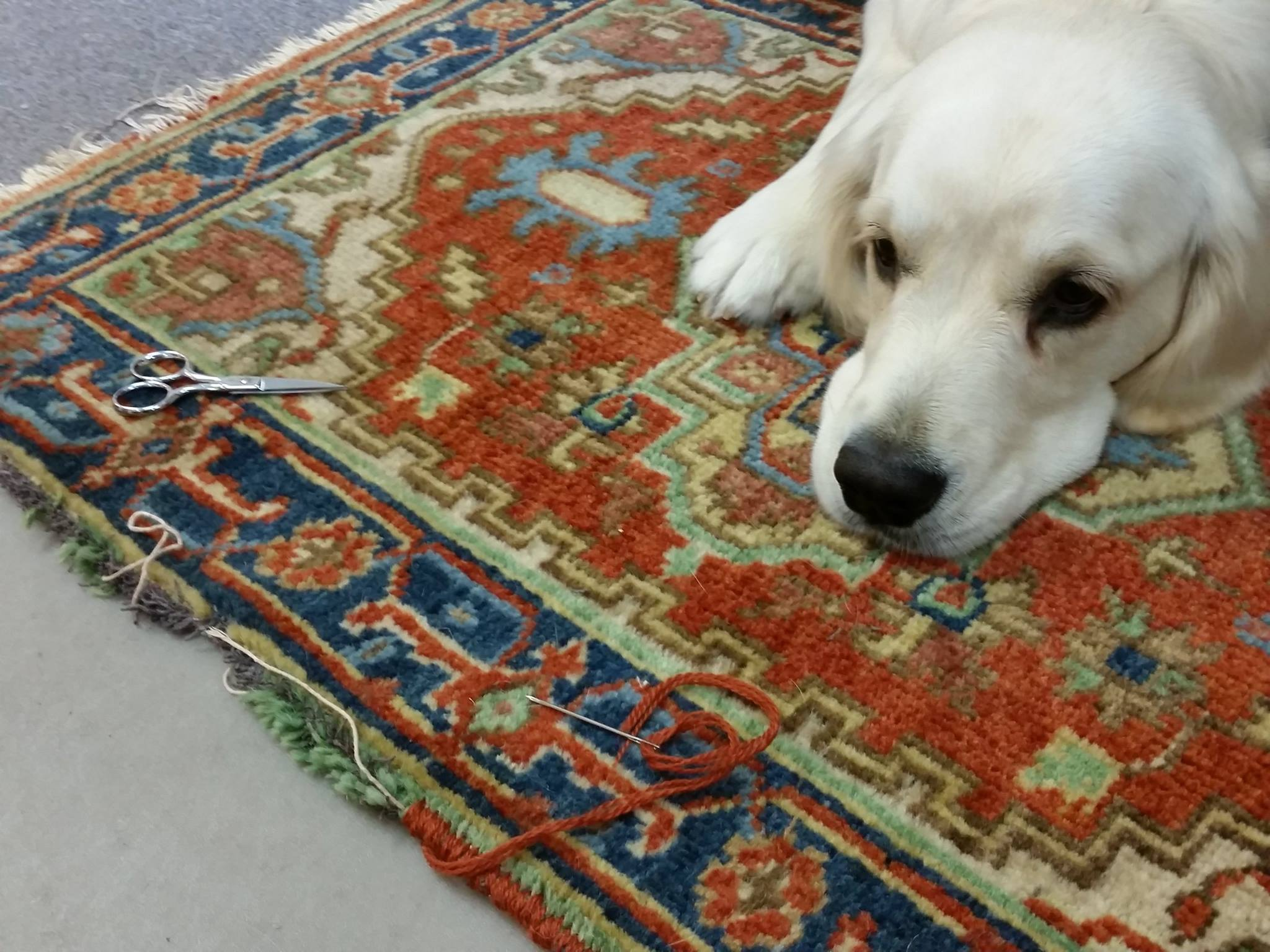 Rug Repair with Bitsy