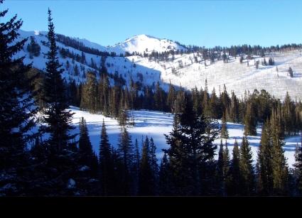 Mountain scenic with tree shilloete    