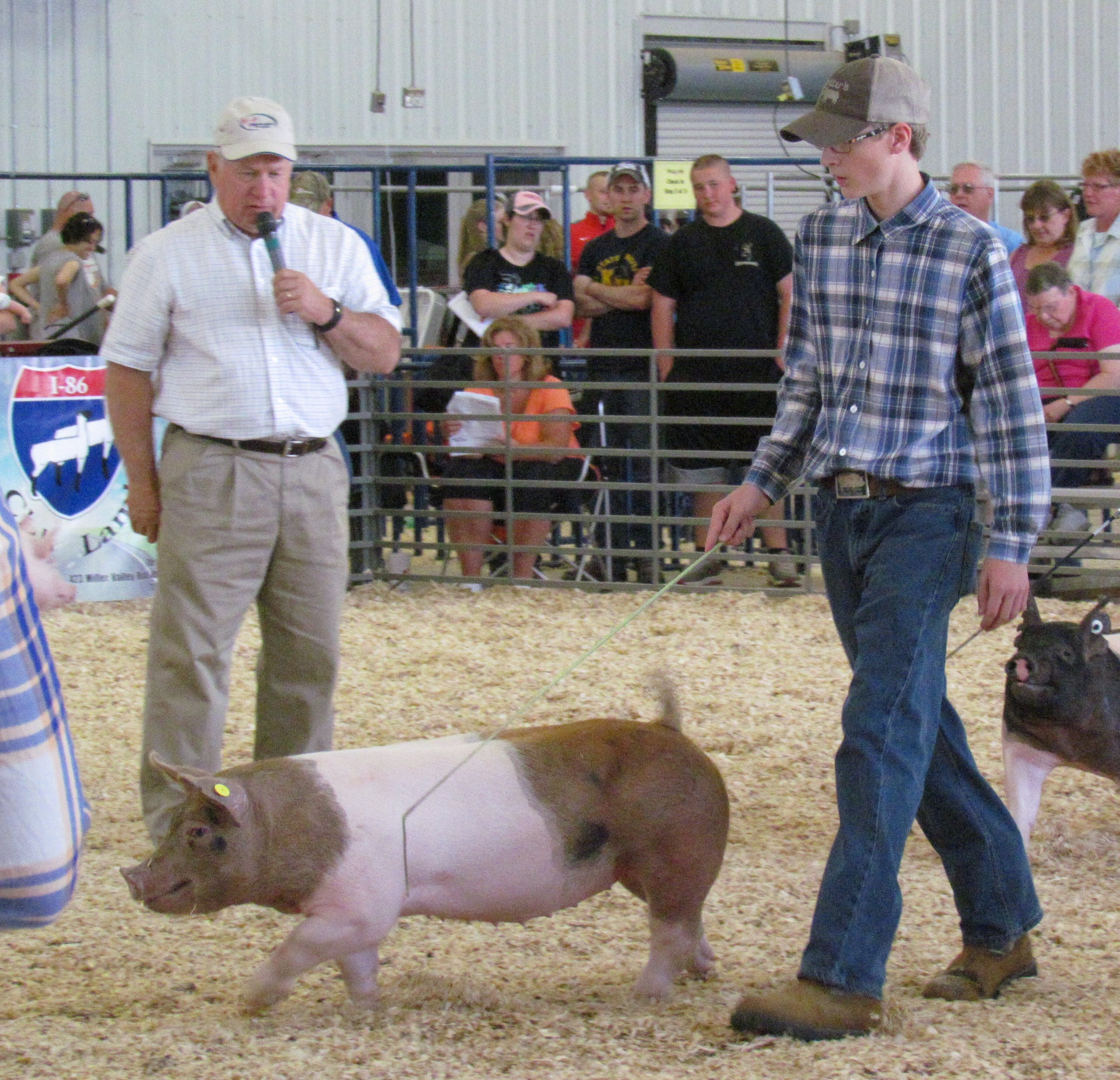 Mertz Family Western New York Hog & Lamb Preview Classic: Show 1 - 2nd, 5th and 7th in class Show 2 - 3rd, 4th and 7th in class
