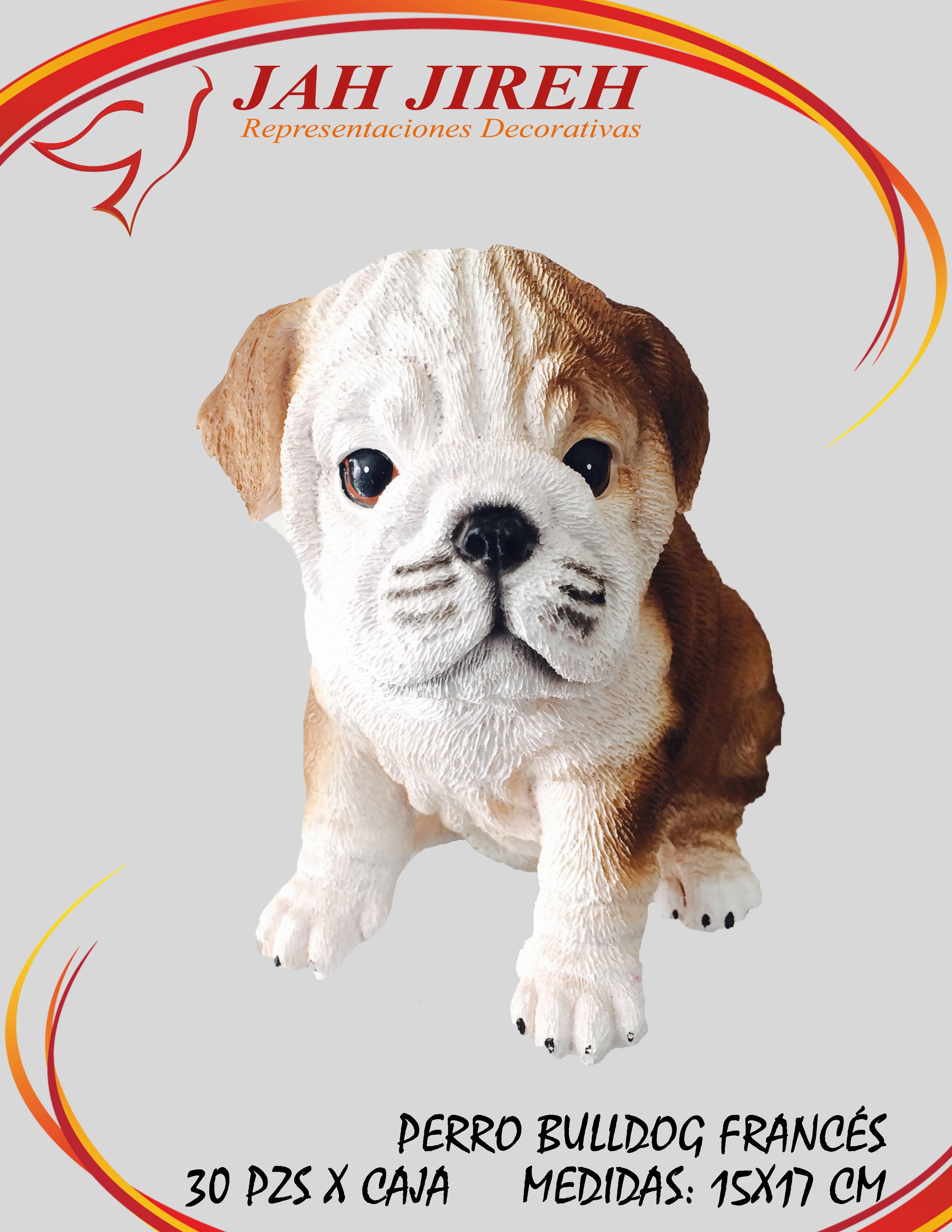 https://0201.nccdn.net/1_2/000/000/11c/ae9/perro-bulldog-franc--s.jpg